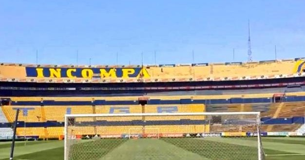 TIGRES incomparables