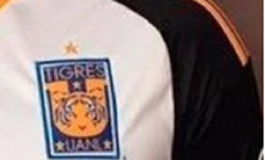 TIGRES escudo