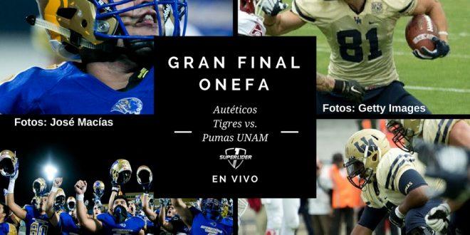 final-onefa-1