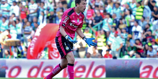 marchesin-6
